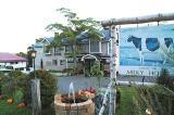 ミルキーハウスのウシの看板と噴水